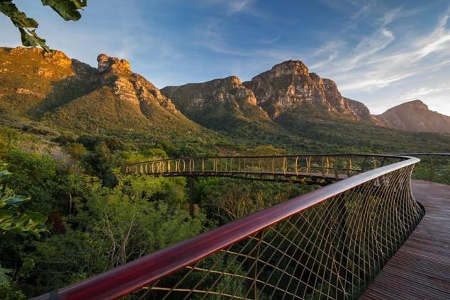 A ponte que te permite andar por cima das árvores de um jardim, na África do Sul - image 3