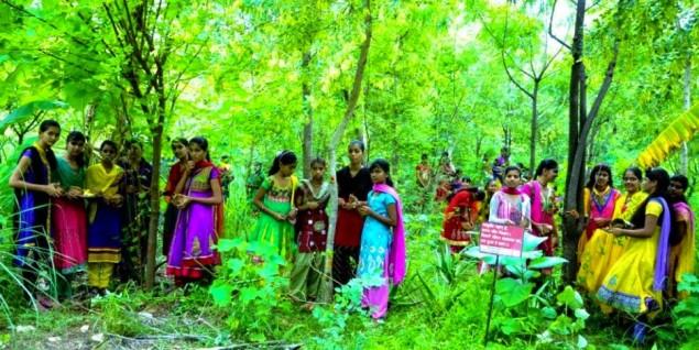 A vila indiana onde se celebra o nascimento de cada menina plantando mais de 100 árvores - image 4