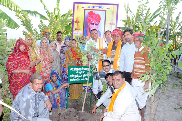 A vila indiana onde se celebra o nascimento de cada menina plantando mais de 100 árvores - image 2