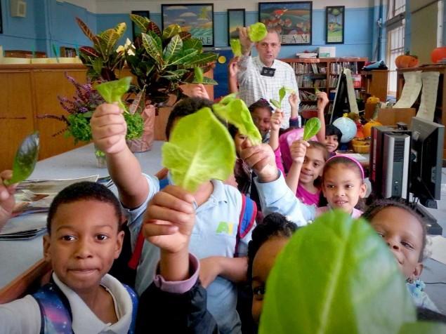 Professor leva horta para dentro da sala de aula para intensificar aprendizado e cativar alunos - image 8