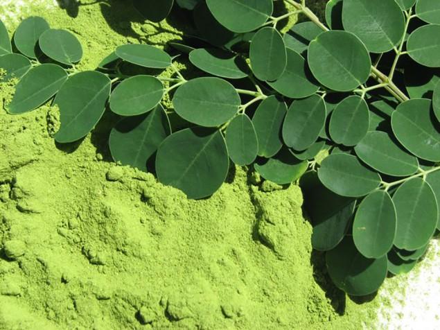 As folhas desta planta têem muito mais vitamina C que a laranja e mais vitamina A que a cenoura - image 3