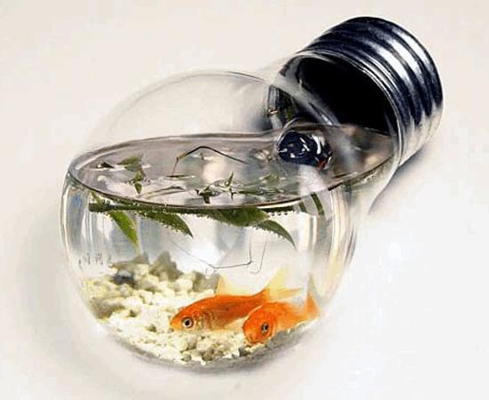 10 dicas para reaproveitares lâmpadas queimadas - image 4