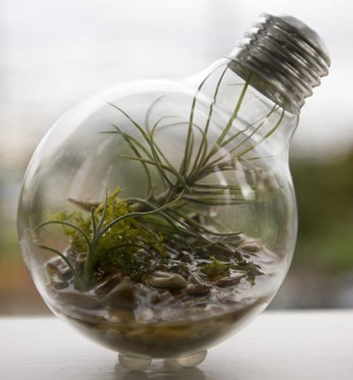 10 dicas para reaproveitares lâmpadas queimadas - image 6