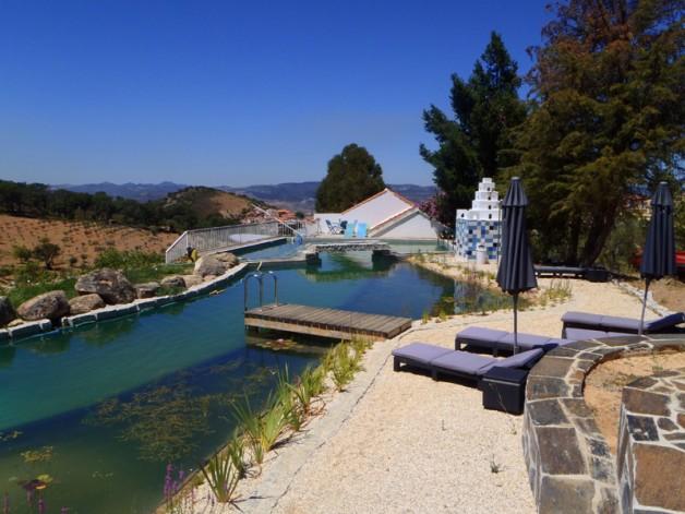 Inovadoras e sustentáveis piscinas biológicas que trocam o cloro por plantas - image 4