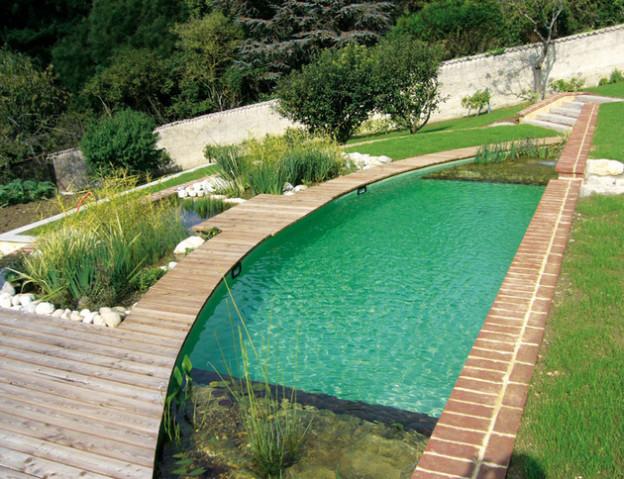 Inovadoras e sustentáveis piscinas biológicas que trocam o cloro por plantas - image 6