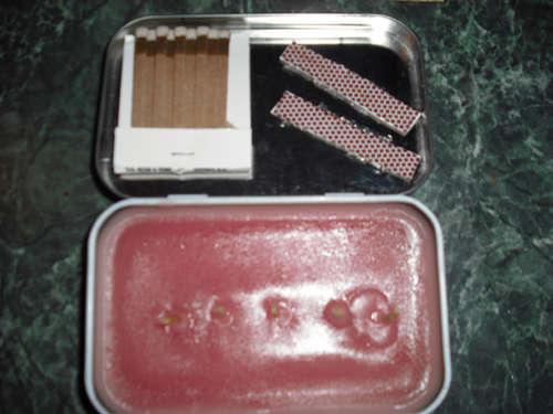 Aproveita as latas de sardinha e atum para fazeres artesanato! - image 8