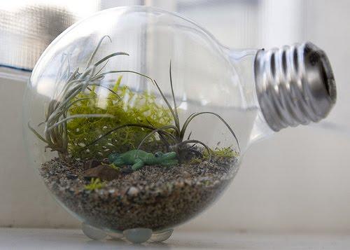 Oito dicas para reaproveitares lâmpadas queimadas - image 2