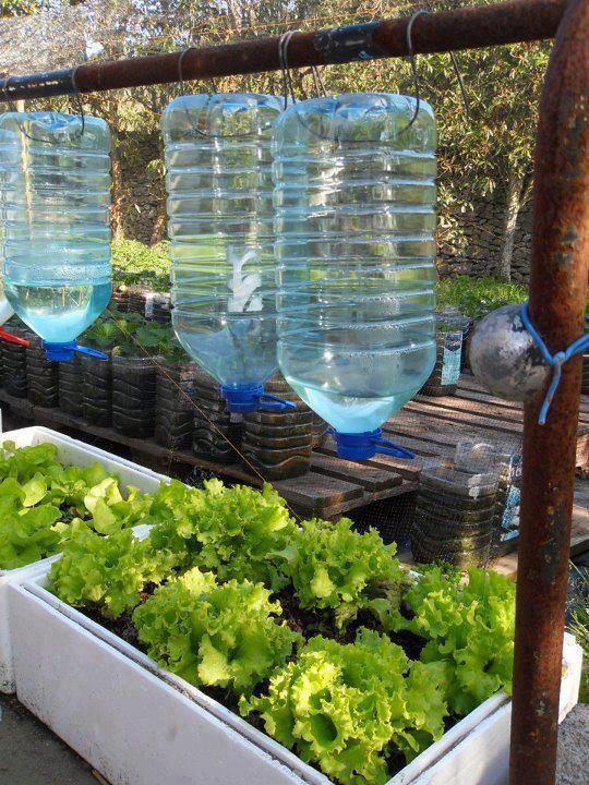 8 formas de conservares água, dentro e fora de casa - image 8